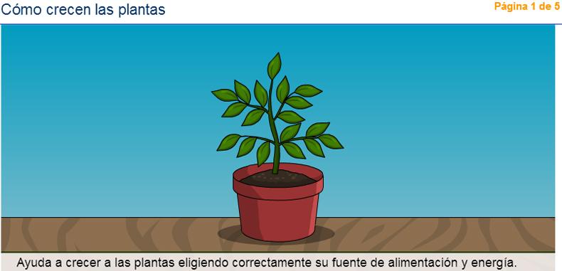 58 actividades sobre las plantas para estudiantes