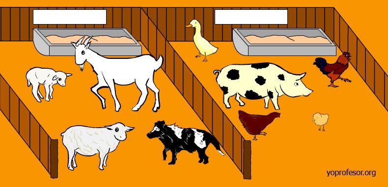 77 actividades para que los estudiantes puedan aprender de animales (actualizado 2015)