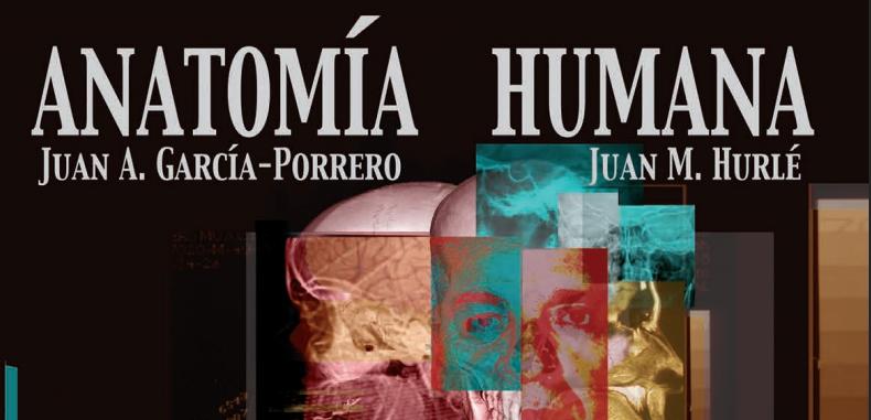 Anatomía Humana por Juan A. García Porrero (Descarga Gratuita)