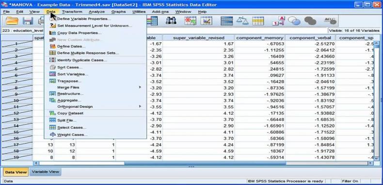 Manuales SPSS y de Excel en PDF para docentes investigadores