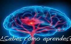 Hoy compartimos con ustedes infografias que son de gran ayuda para comprender los diferentes estilos de aprendizaje. Cada persona está condicionada por muchos factores que hacen que la forma de aprender sea única: ambiente, personalidad, motivación, actitudes, aptitudes, habilidades, etc. Sin embargo, descubrir la manera en que la mente humana aprende es una de las claves para poder desarrollar la inteligencia de una persona.