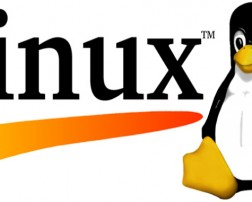 Linux_logo-790