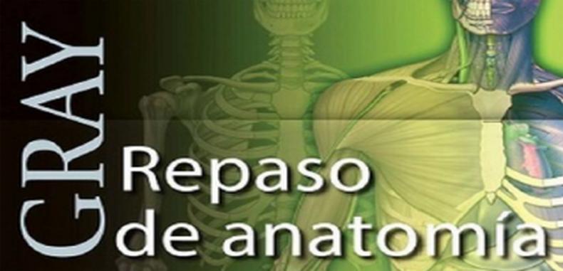 Gray Repaso de Anatomía, Preguntas y Respuestas (Descarga Gratuita ...