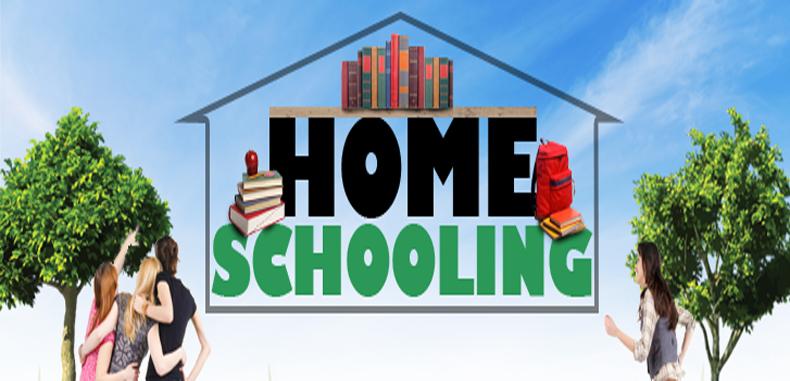 Analizando el Homeschooling (buena opcion o no)