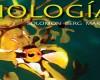 Biología Solomon