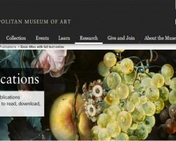 Museo Metropolitano New York