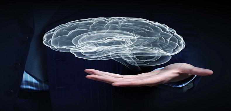 Analizando la Neurociencia del aprendizaje