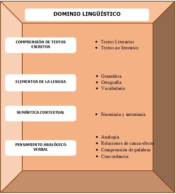 Dominio Lingüístico